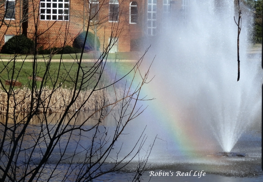 Rainbow in Fountain
