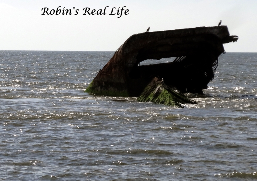 Ship Wreck Cape May Auto Level Watermark