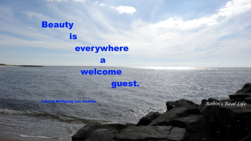 Beauty welcome guest quote watermark